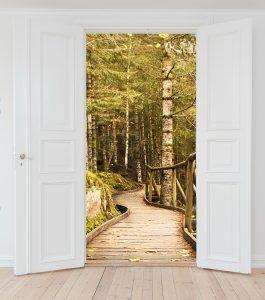 Image illustrant le texte d'accueil sur le site internet de Lumniscien. Photo retouchée d'une porte blanche à double battant ouverte sur un chemin en extérieur. C'est un passage d'un pièce blanche et vide vers un chemin en bois dans une forêt remplie d'arbre et de roches. L'image interprète le passage vers un autre chemin, un autre monde. Un monde vivant et changeant.